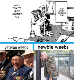Veteran weebs vs new weebs