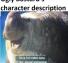 Ugly Bastard's character description